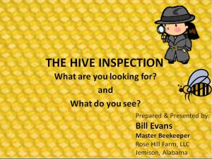 hive-inspection-slide-show-icon