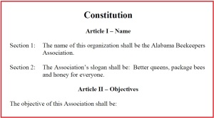 ABA Constitution and Bylaws